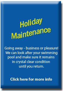Services-Pool Holiday Maintenance